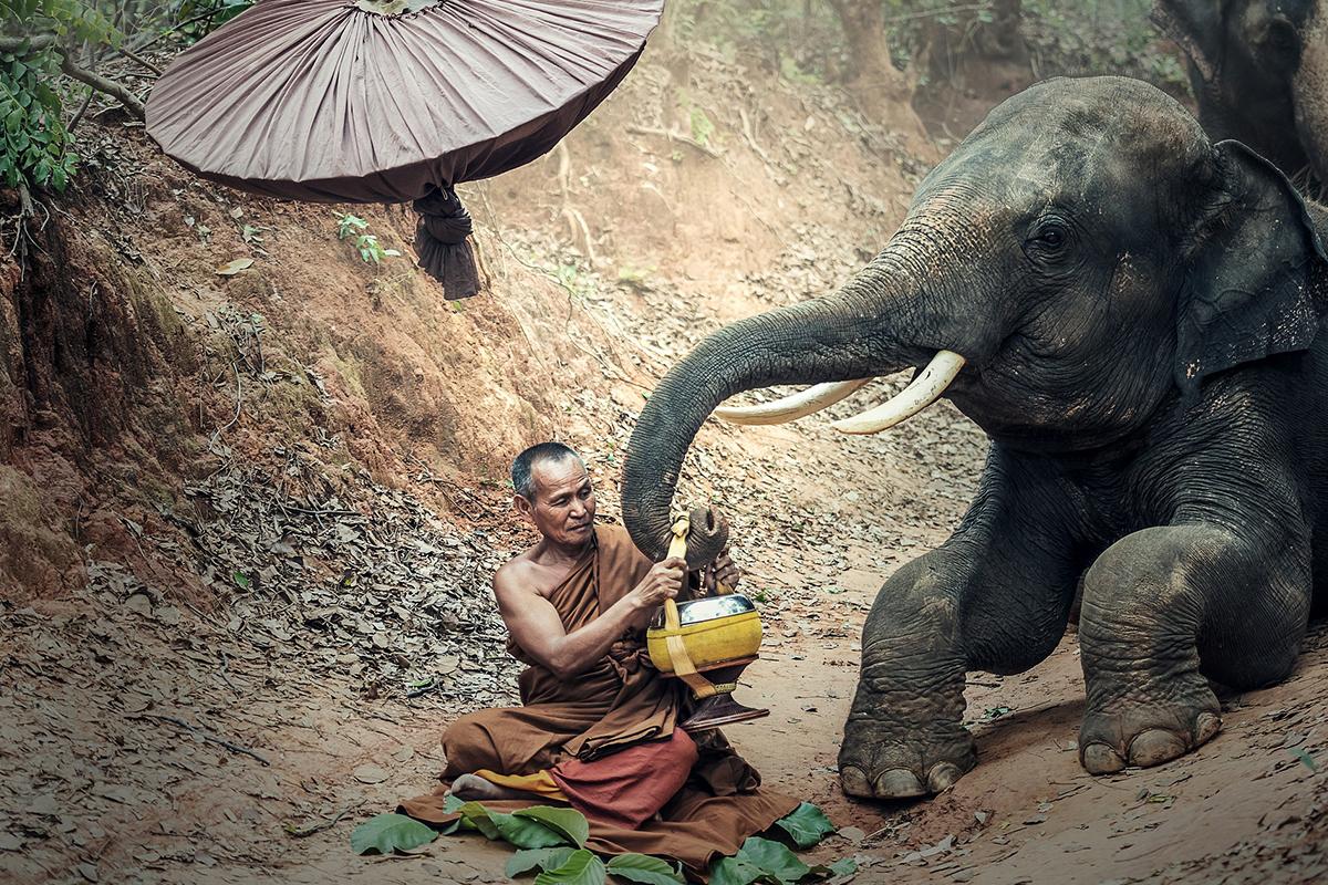Visiter de Cambodge autrement