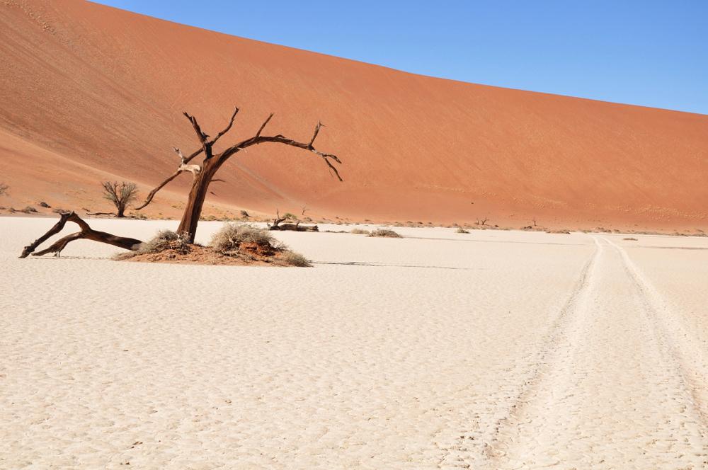 Namibie - Desert du namib Sossusvlei 1