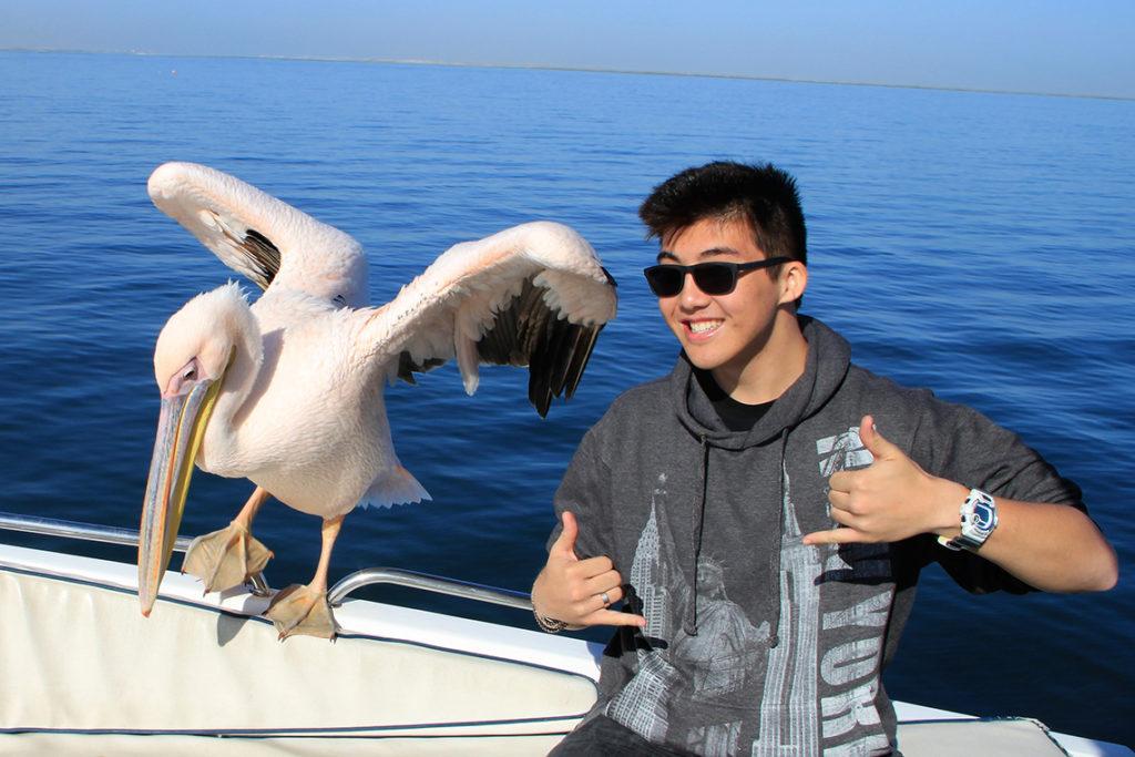 Namibie - Walvis bay, un jeune avec un pelican