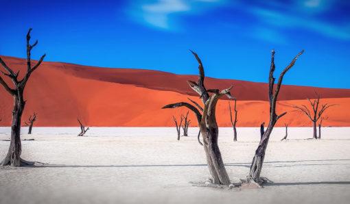 La Namibie désert de sel