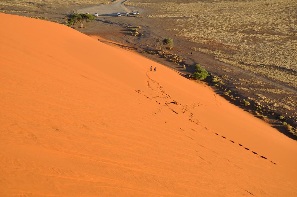 Namibie - desert du Namib, avant Sossusvlei