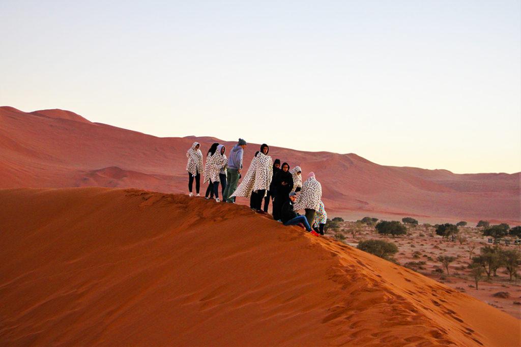 Namibie - lever de soleil sur le desert du Namib