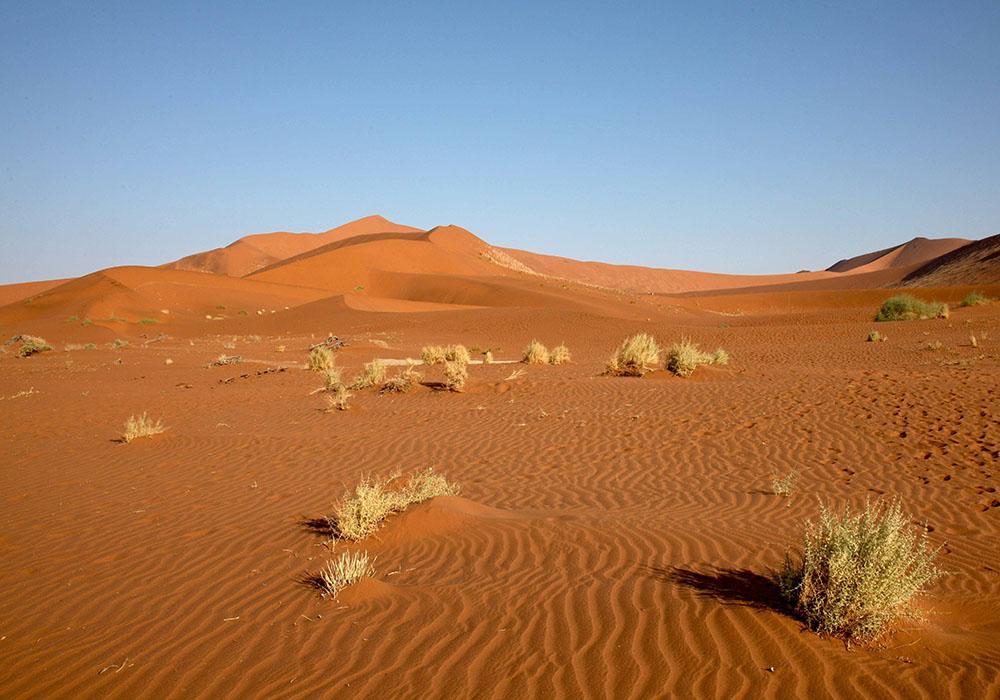 Paysage de Namibie Sossusvlei