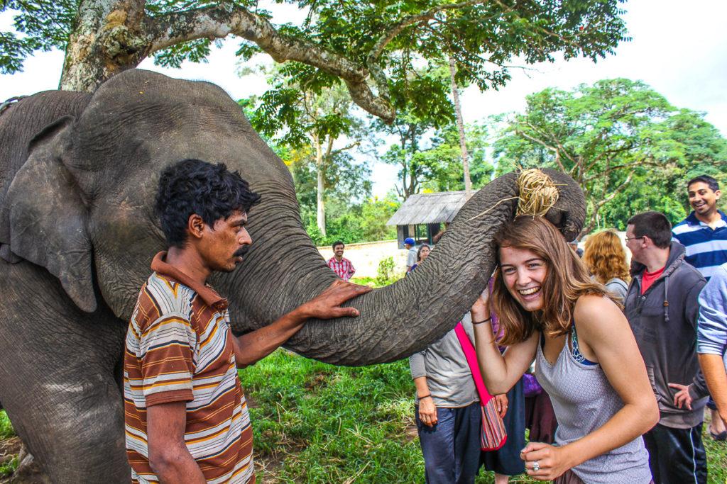 Inde - jeune fille avec éléphant BD