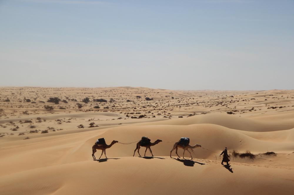 Mauritanie - Dans le désert de l'Adrar 5