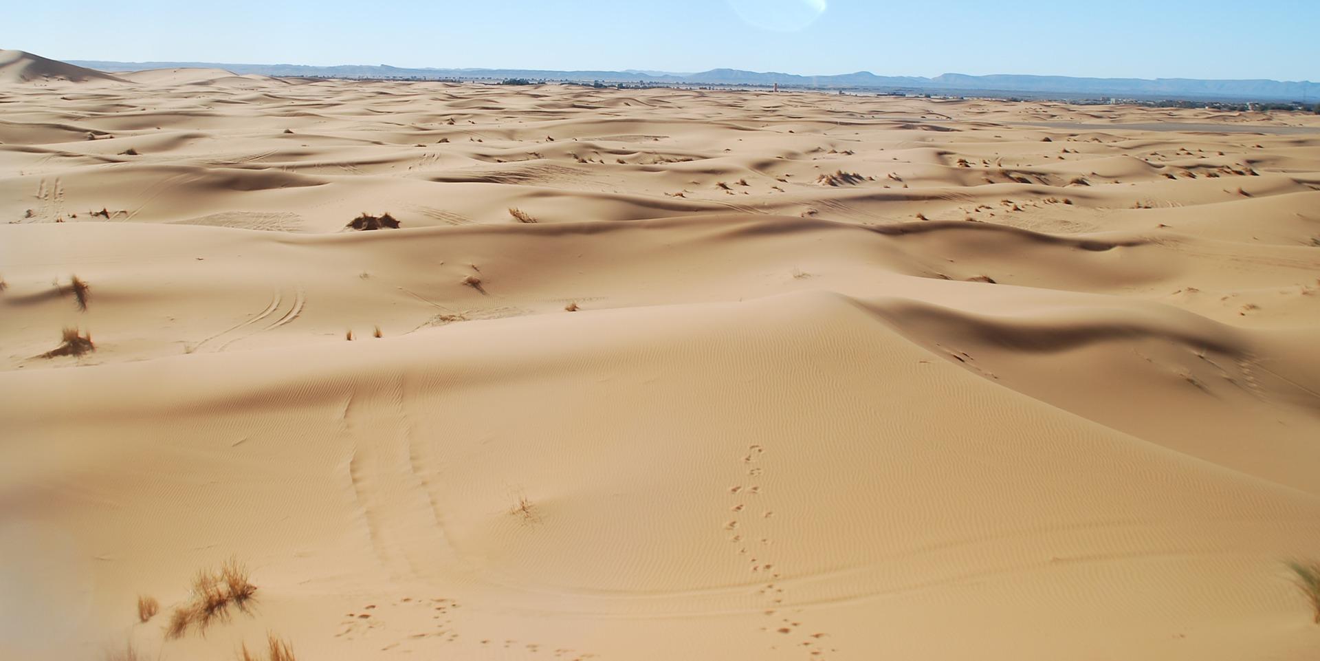 Maroc - Merzouga, désert
